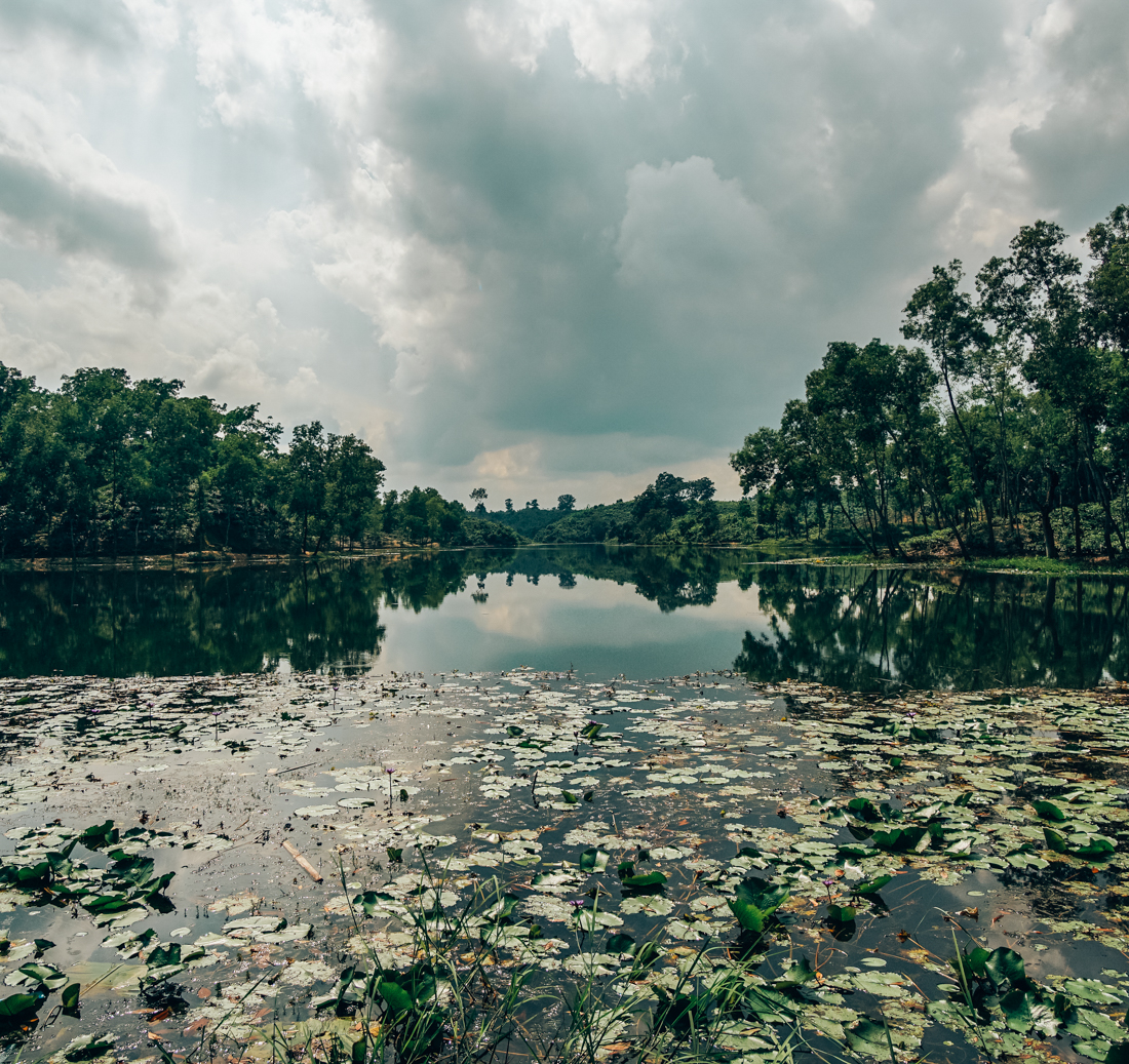 nature bangladesh