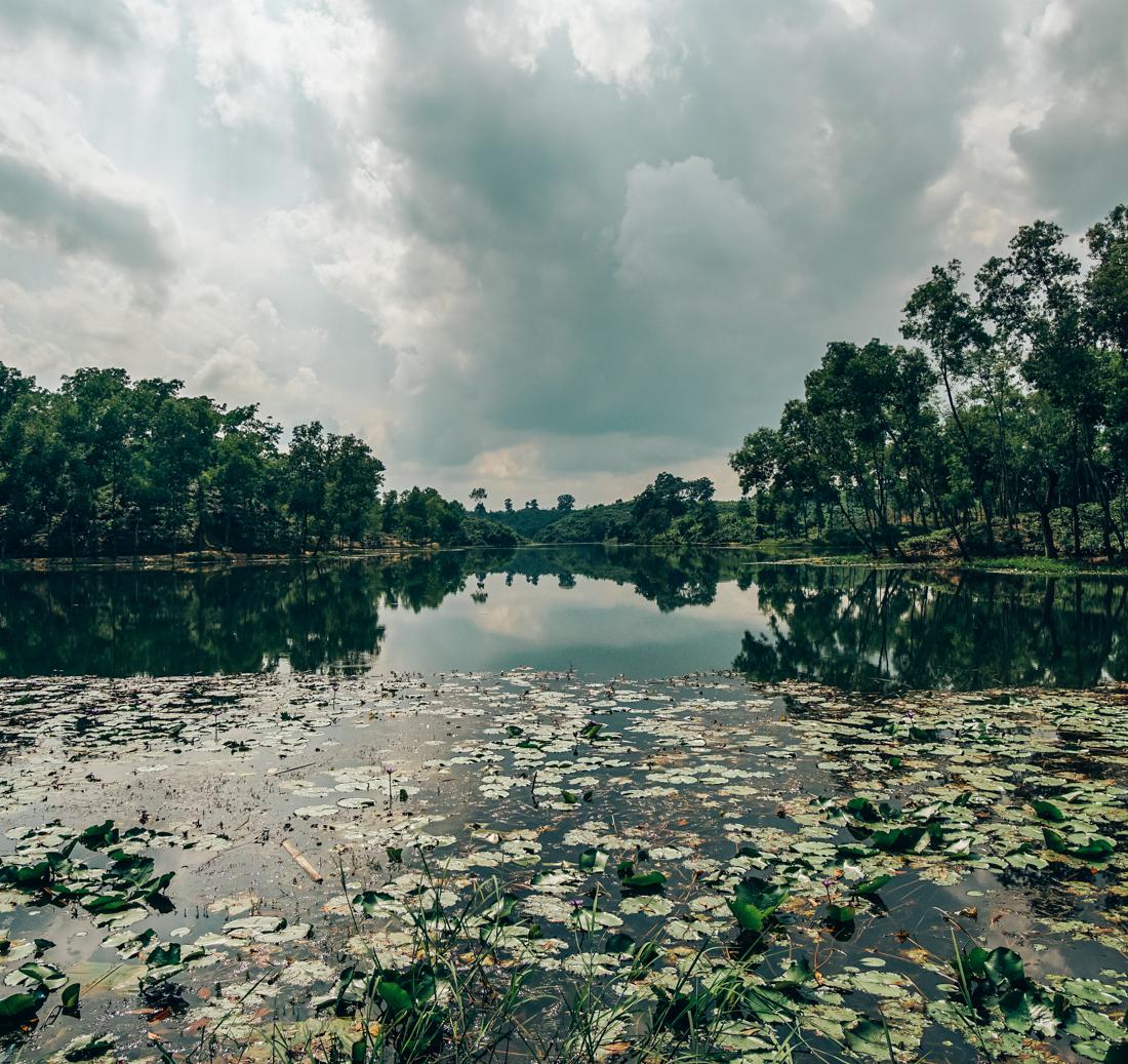nature bangladesh